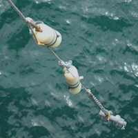 Deployment of the CLAM water sampling method can sample for a full 36 hours
